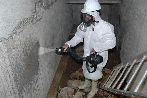 los especialistas en desinfección