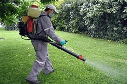 los especialistas en fumigación y control de plagas