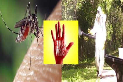fumiga tu hogar contra o negocio el zika
